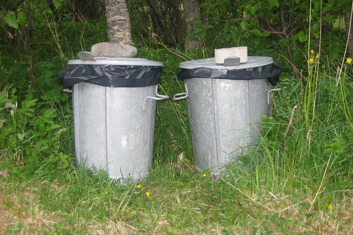 (17) Dustbins.jpg