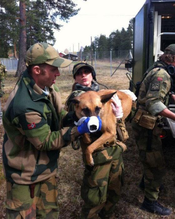 Девушки в армии Норвегии (49).jpg