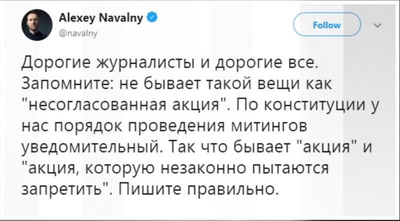 Конституция (Навальный).jpg