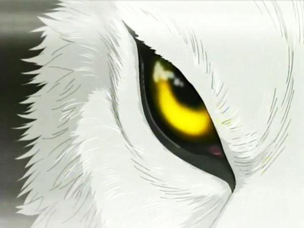 Глаза Стража
