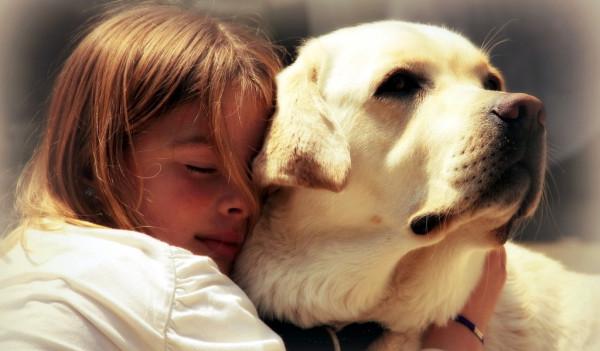Человек и собака (17)