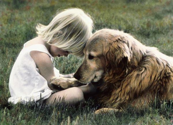Человек и собака (22)