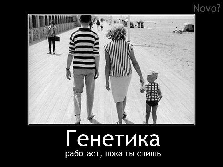 funny,genetic,fun-1b87ffa012878462d8780f8c8c90a9ce_h