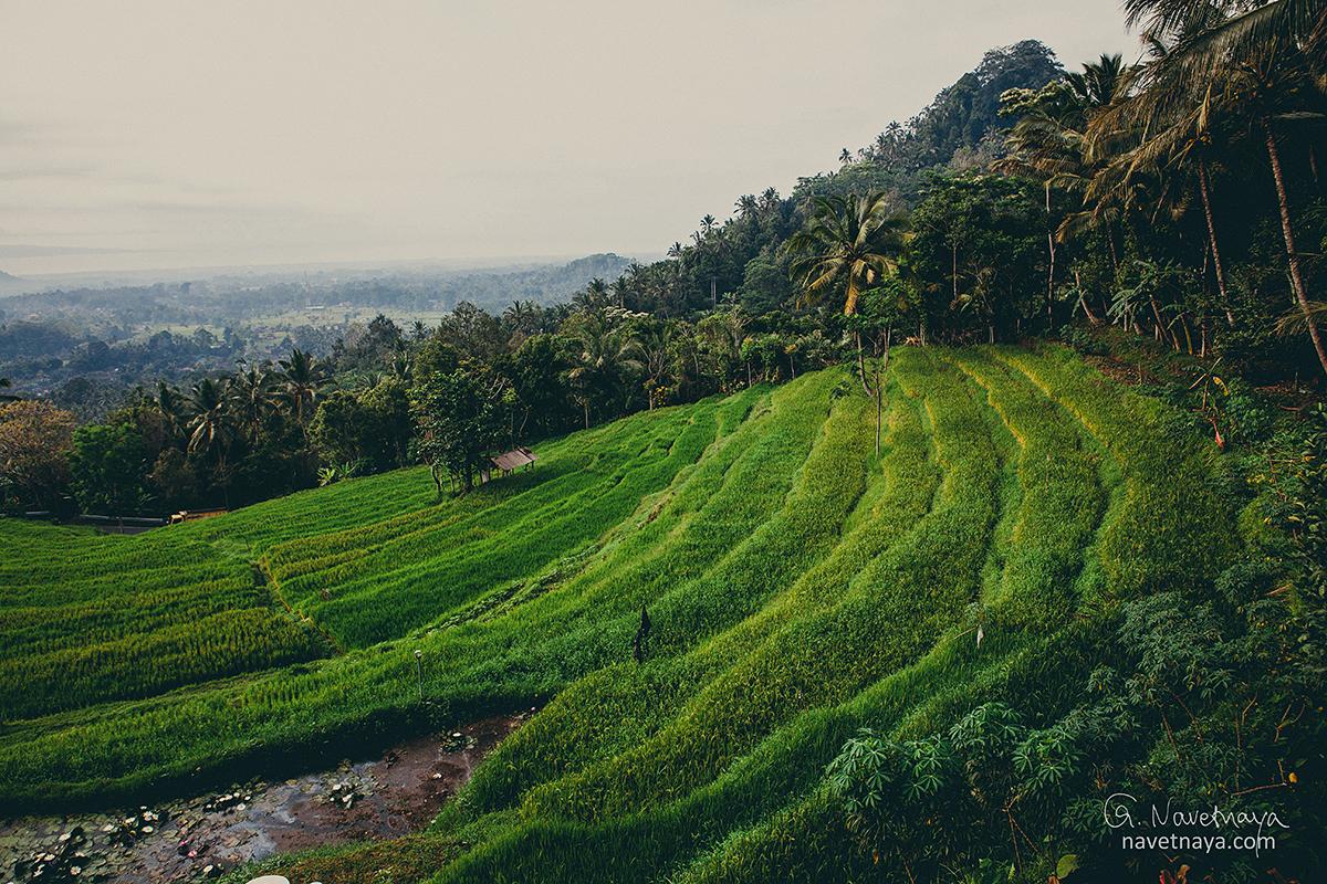 Travel photography. Фотограф-путешественник Александра Наветная. Индонезия. Бали. Фототур. Как научиться делать красивые снимки. Уроки по обработке фотографий. Как стать фотографом