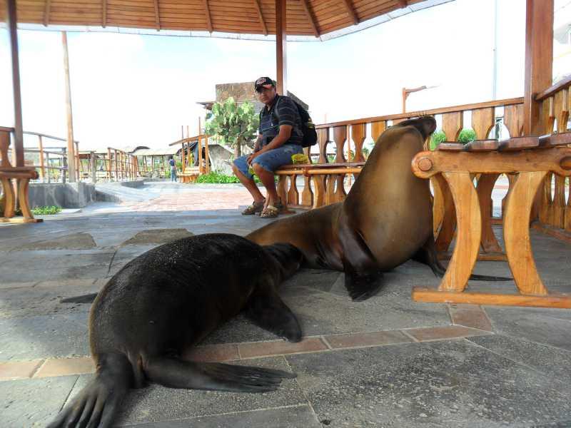 19 ИЮЛЯ, 2012  г. Остров San Cristobal (12)