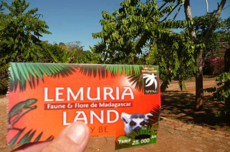 31  АВГУСТА, 2013 г. LEMURIAN LAND (112)