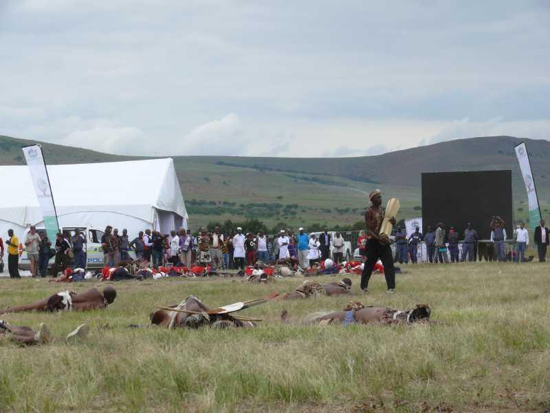 25 ЯНВАРЯ, 2014 г. ПРАЗДНИК - Battle of Isandlwana (70)