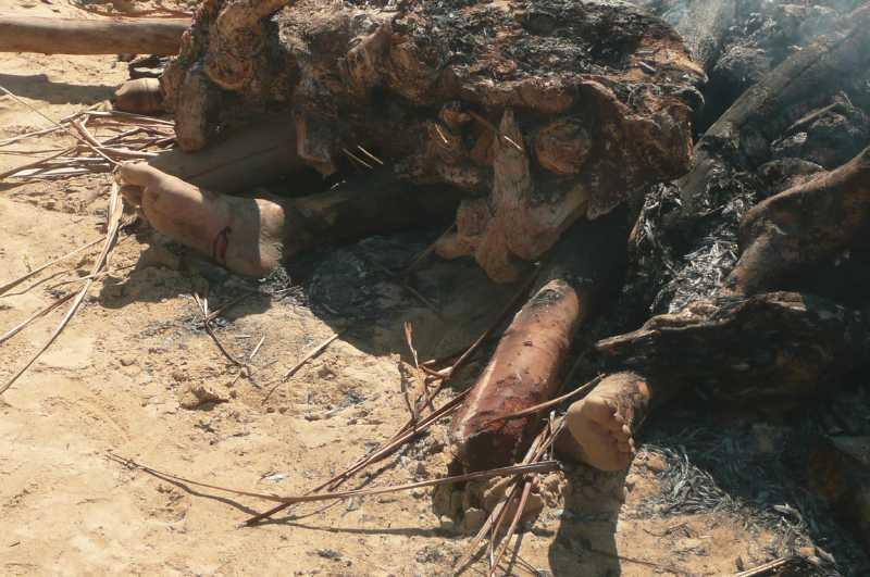 03 ОКТЯБРЯ, 2013 г. NOSY-BE, MADAGASCAR, СУД ЛИНЧА (19)