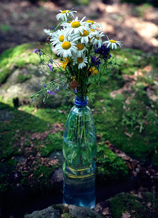 хиппи дети цветов
