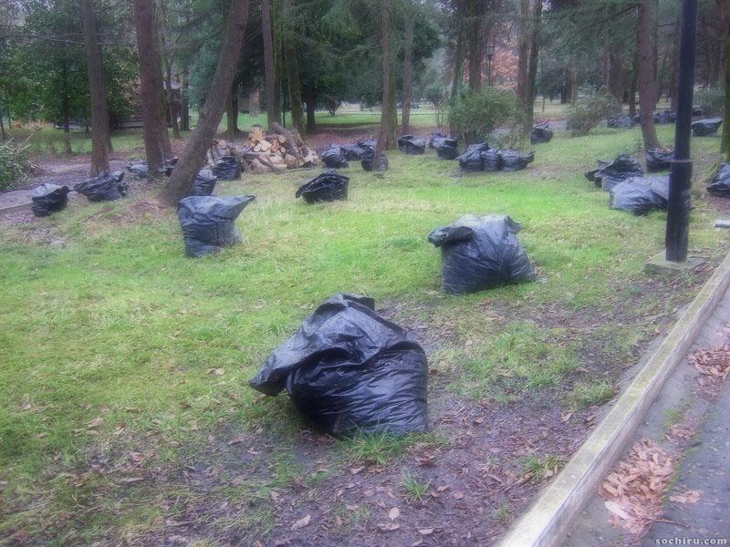 Пакеты с мусором в Ривьере