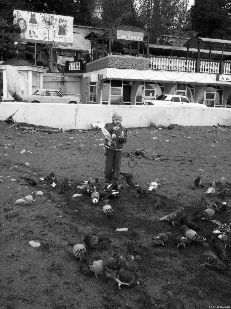 Мальчик кормит голубей на Ривьерском пляже