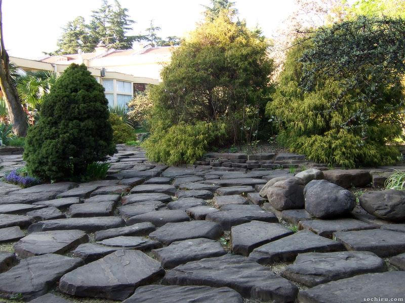 композиция из камней и деревьев
