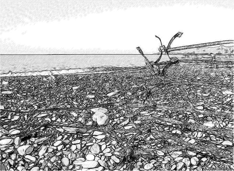 Сочинский пляж в ноябре