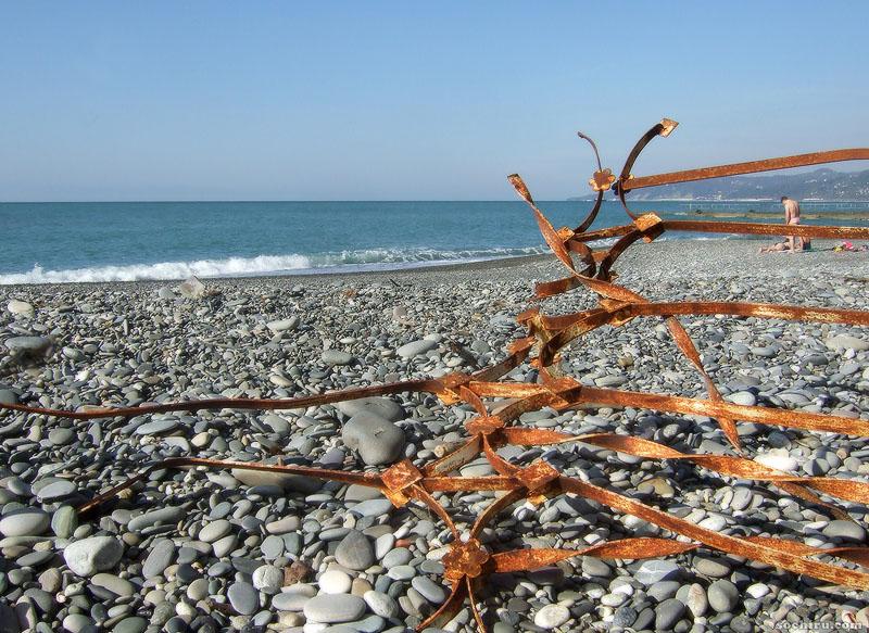 Берег Чёрного моря. Сочи.