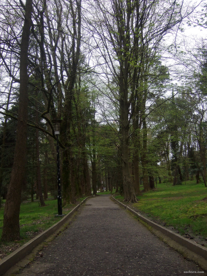 тихая аллея парка Ривьера