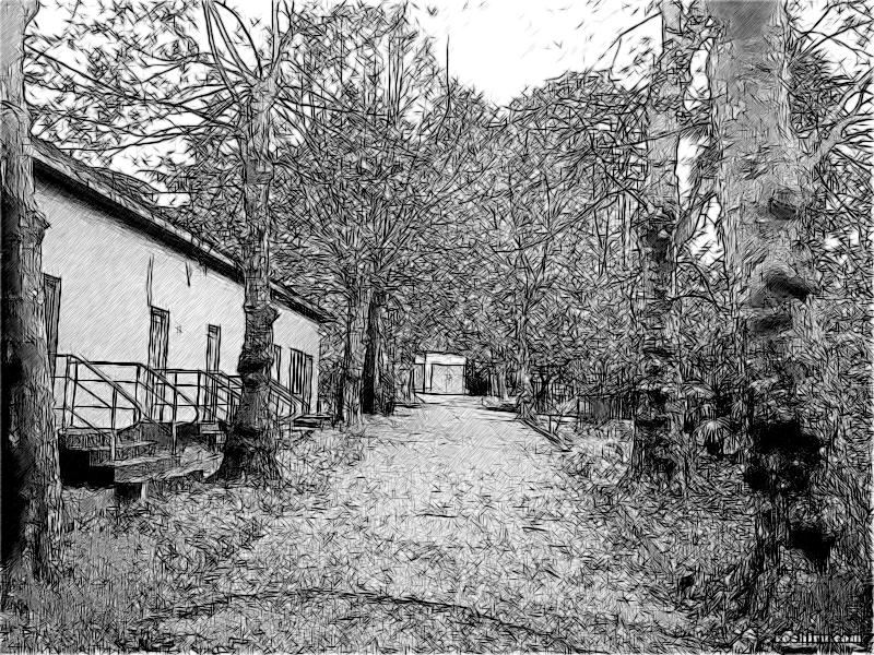 Парк Ривьера в прошлом