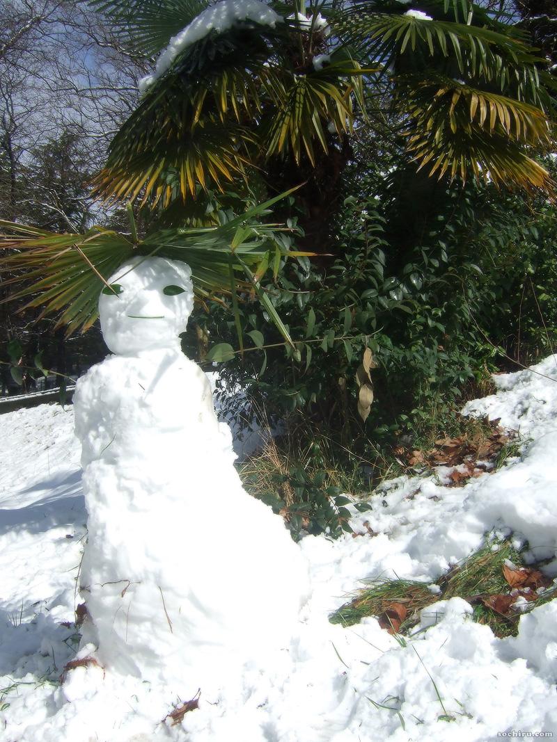 Субтропический снеговик