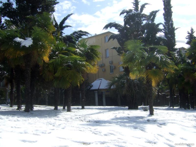 Заснеженная полянка перед отелем Чеботарёв