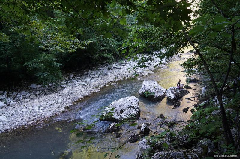 Тисо-самшитовая роща: река Хоста