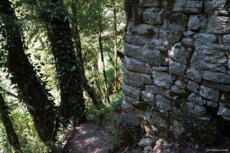 Древняя крепость в Тисо-самшитовой роще