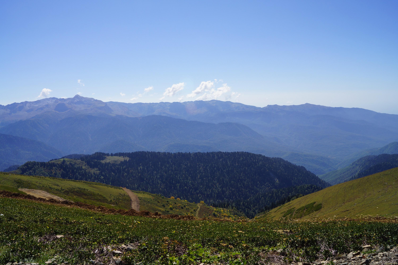 Альпийские луга Роза Хутор