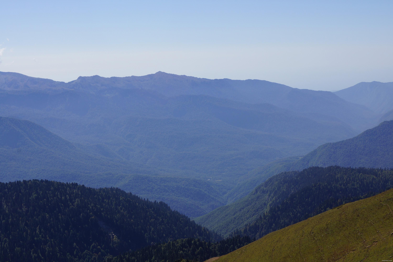 Горы, покрытые пихтовыми лесами