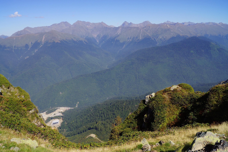 Рододендрон кавказский и горы