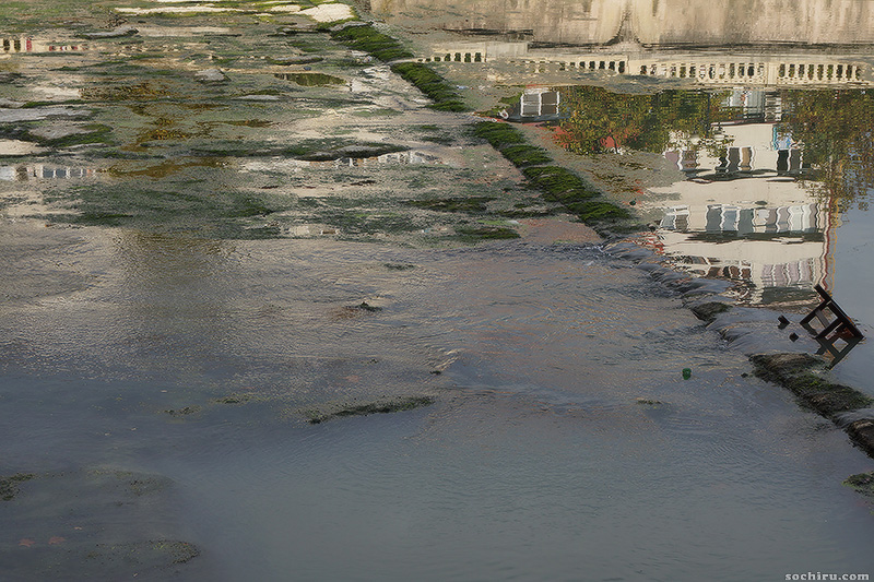 эвтрофикация в реке Сочи