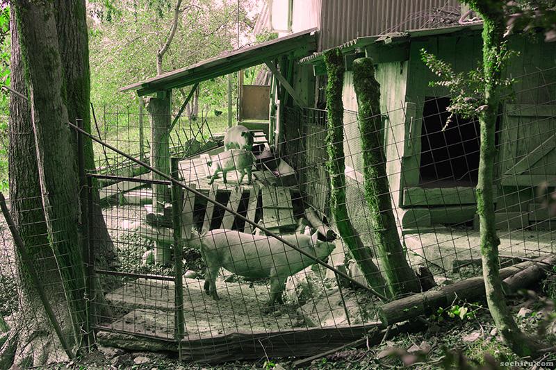 Приусадебное хозяйство у лесопарка Юбилейный