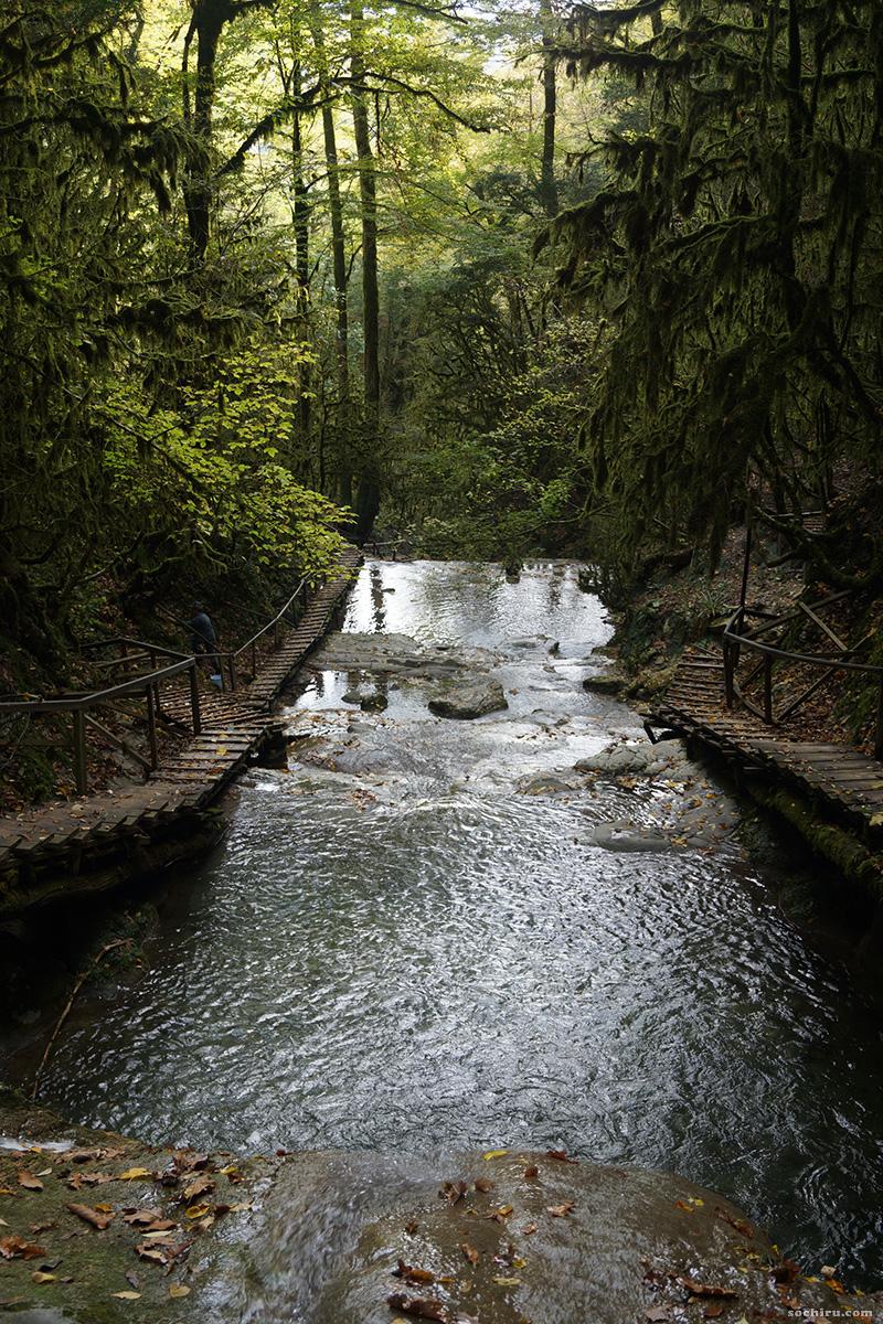 Самшит на 33-ёх водопадах