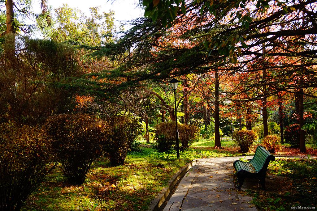 Яркие краски санаторского парка