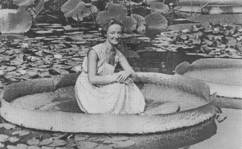 Девушка на листе Виктории Круциана