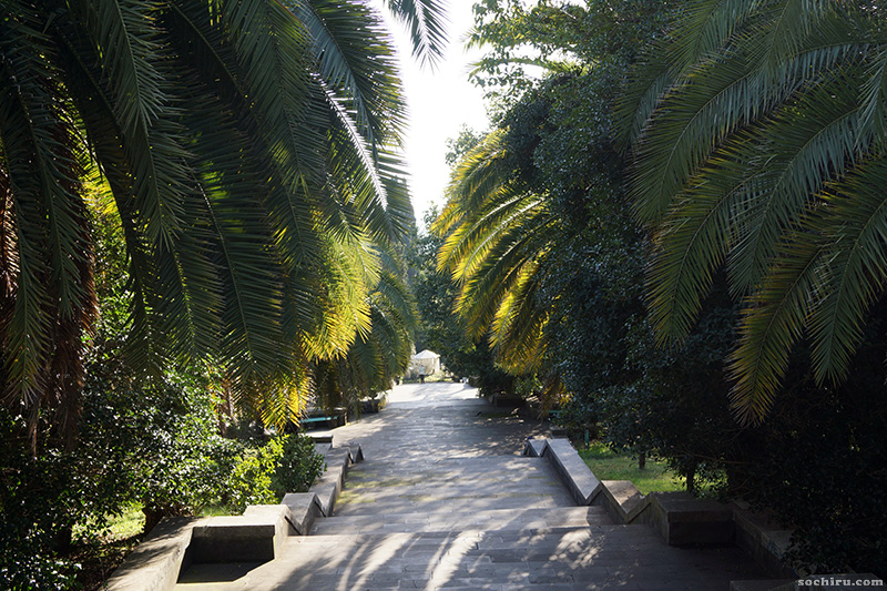 центральная аллея парка Дендрарий