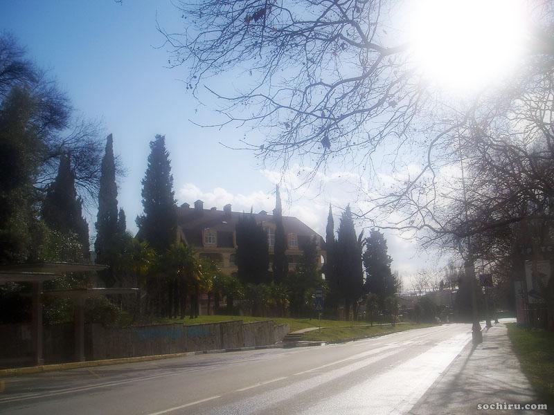 улица Виноградная