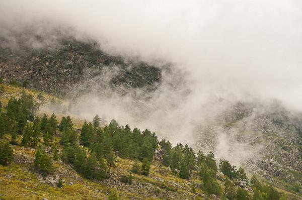 Туман и горы