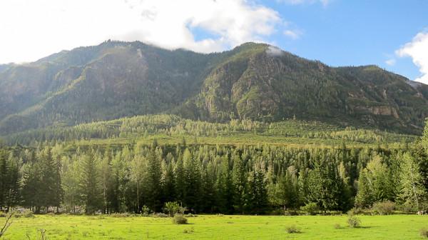 Пейзаж Горный Алтай