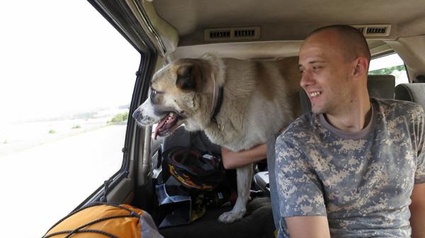 Собака и Максим