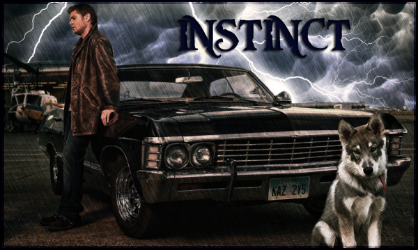 instincttitle