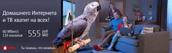 в статью как выбрать попугая_жако из рекламы.png