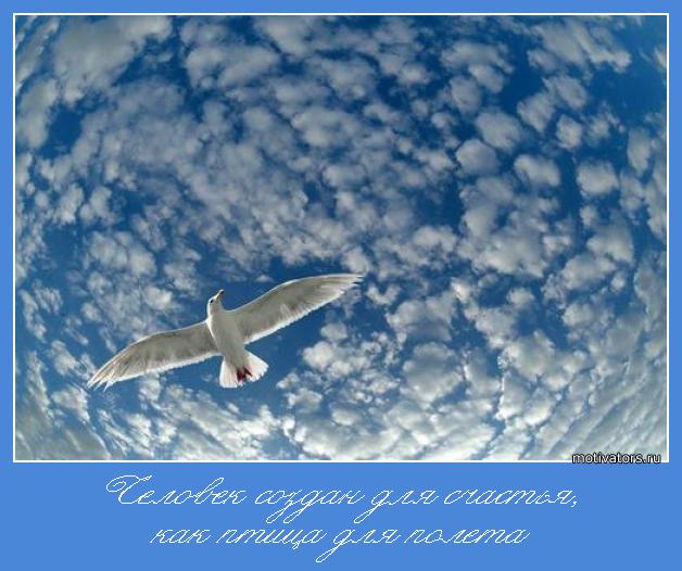 Счастье - человек создан, как птица для полета