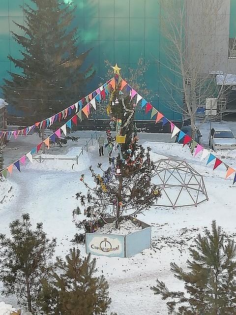 91-елочка1-Омск