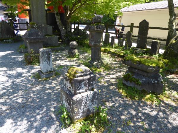 kyoto strange place