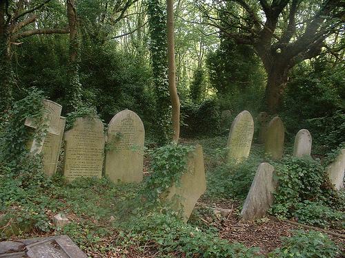 colderidge and Highgate cemetery 017