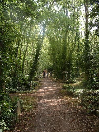 colderidge and Highgate cemetery 022