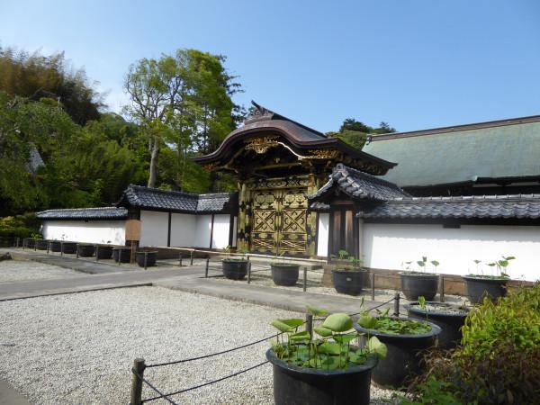 kenchoji17 gates