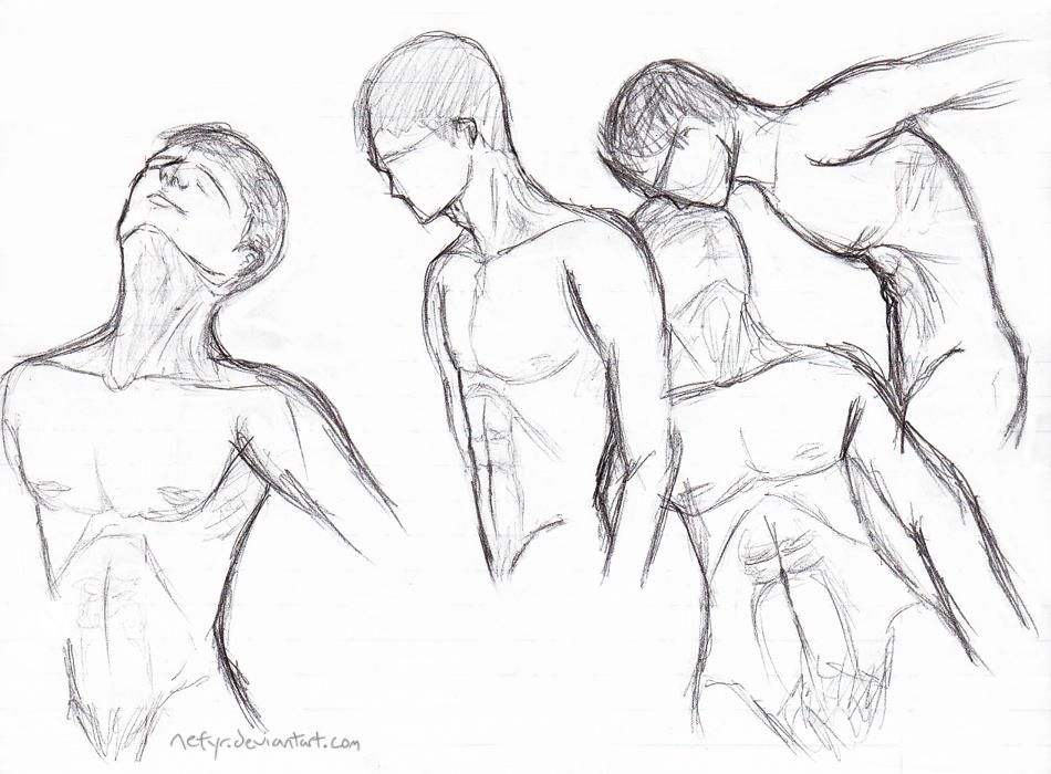 Anatomy Practice Nefyrs Art