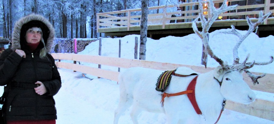 Полина Жеребцова и ее друг Луми (Снег)
