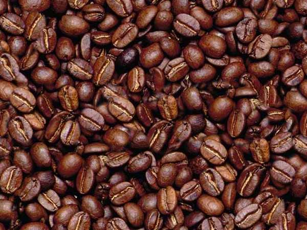seamless coffee bean background