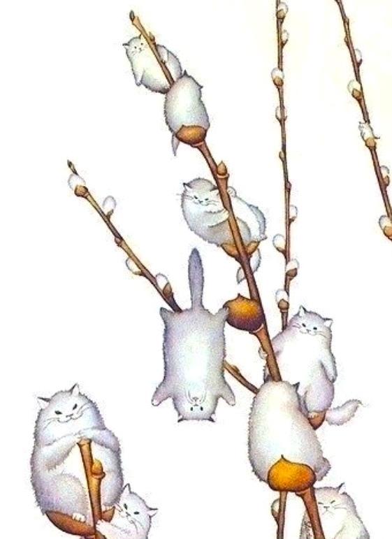 котики вербочки