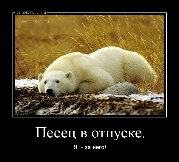 5510_900.jpg